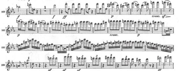 Beethoven Excerpt