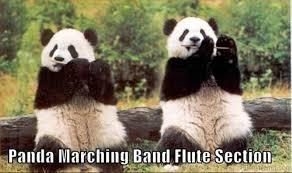flute meme 17